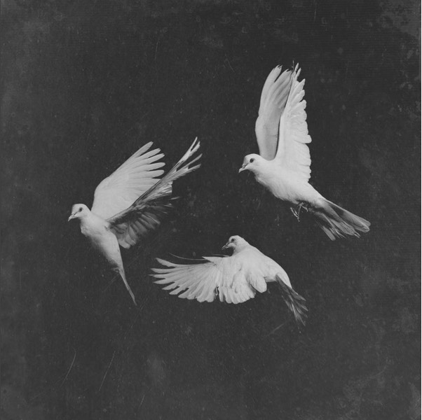 new_Pusha_T